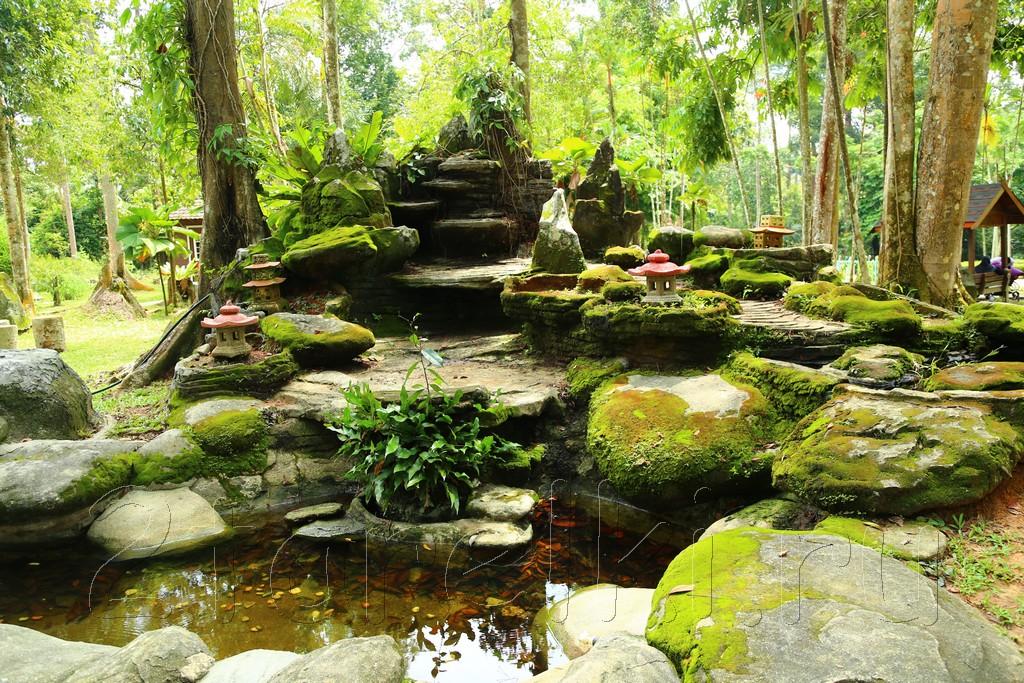 Botanical Garden 17