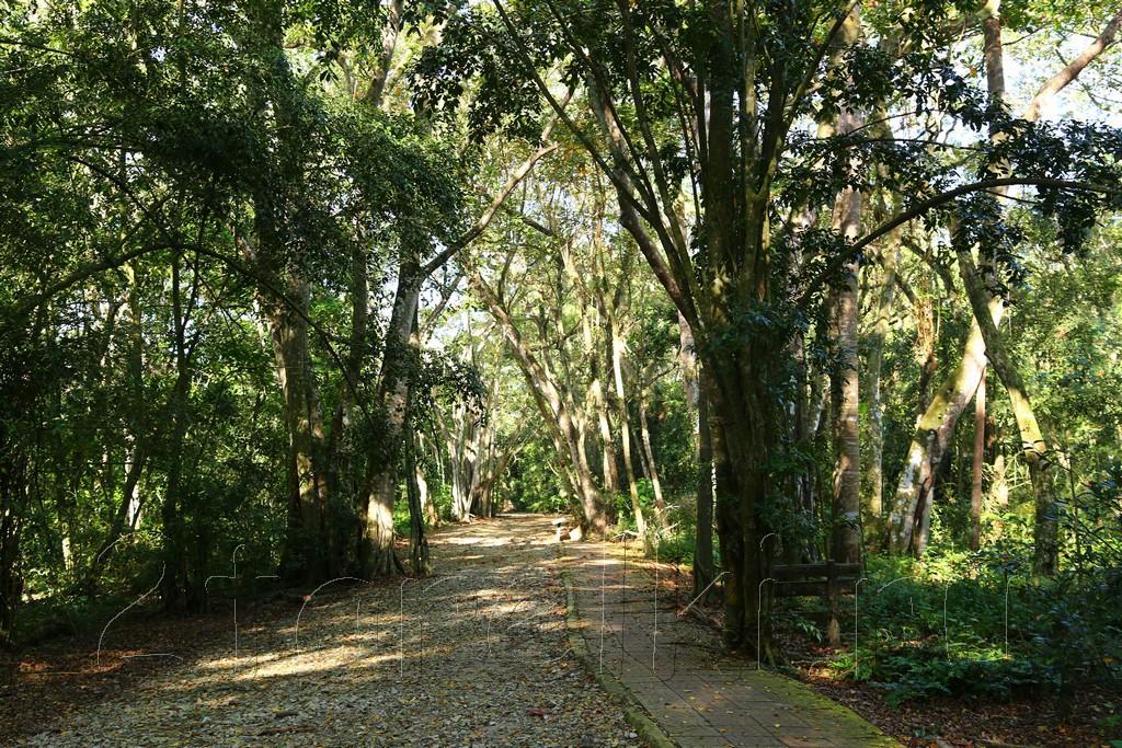 Kuala Selangor Nature Park (Taman Alam Kuala Selangor)