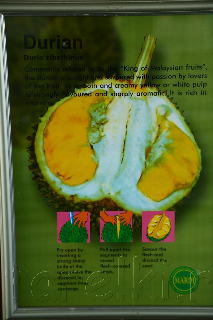 фруктовая ферма