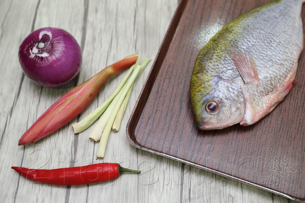 Рыба, припущенная с цветком имбиря 1