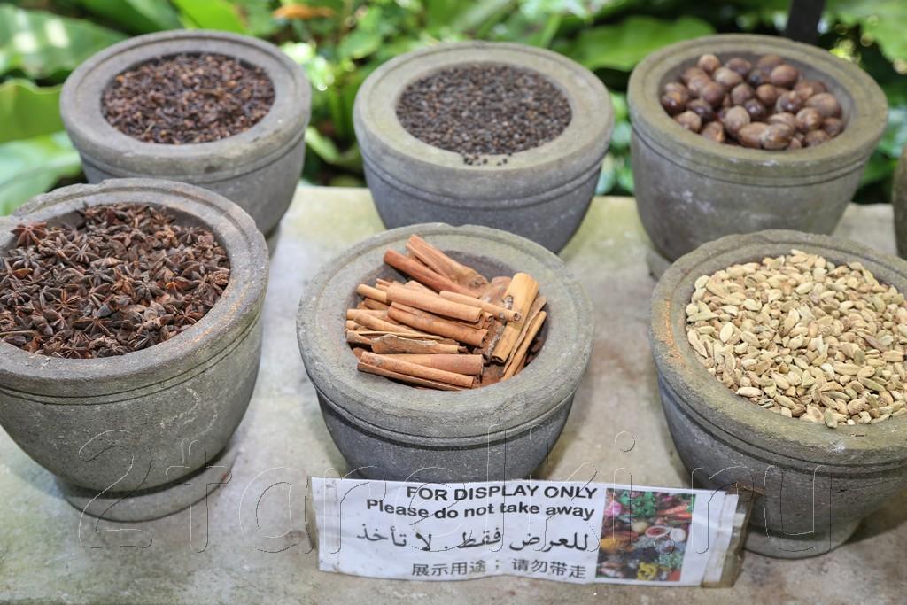 Spices Garden 2